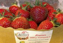 Ô P'tits Fruits d'Anne