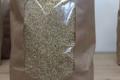 Ferme de Pierrelaye. Quinoa