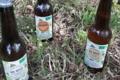 Sève de Bouleau du Limousin. Bière à la Sève de bouleau
