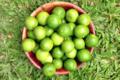 Tahiti Fenua Fruits. Citron vert