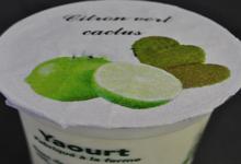 Aux délices de grand mère. yaourt fermier citron cactus