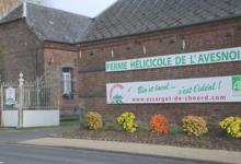 Ferme Hélicicole de l'Avesnois. L'escargot de Ch'Nord